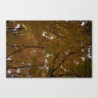 Sunlit Autumn Tree Leaves Canvas Print