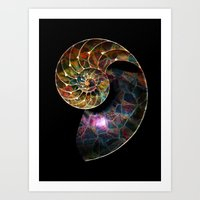 Fossilized Nautilus Shel… Art Print