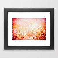 Daucus Carota Framed Art Print