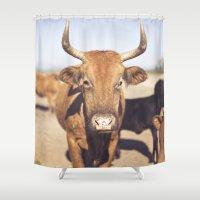On the Farm  Shower Curtain