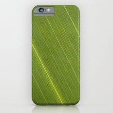 Palm Tree Leaf Slim Case iPhone 6s