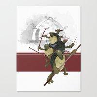 Turtle Drome Canvas Print