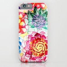 Colorful Succulents  Slim Case iPhone 6s