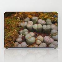 Cactus Stones iPad Case