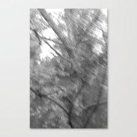 Treeage I - BW Canvas Print