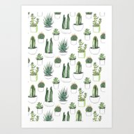 Watercolour Cacti And Su… Art Print