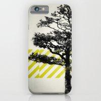 Ulmus parvifolia (Defying the Odds) iPhone 6 Slim Case