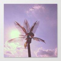 Palm Plane Canvas Print