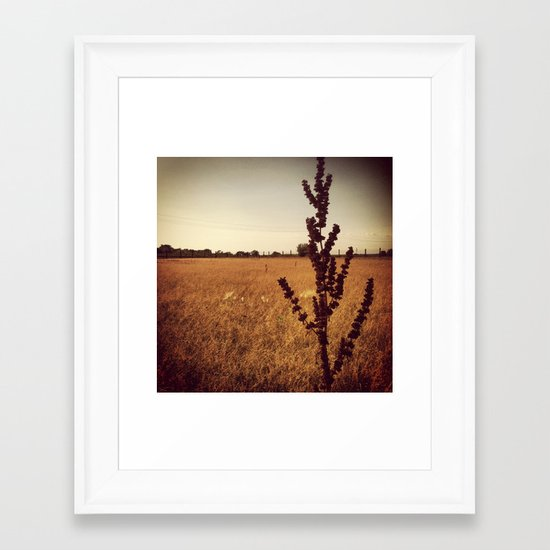 Wisconsin Prairie  Framed Art Print