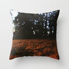 Fall's Last Light Throw Pillow