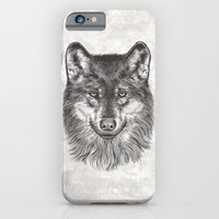 iPhone & iPod Case featuring Canis Lupus (Gray Wolf) by Rachel Caldwell