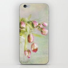 a sign of spring iPhone & iPod Skin
