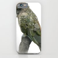 iPhone & iPod Case featuring Kea Pattern by Clare Cripps