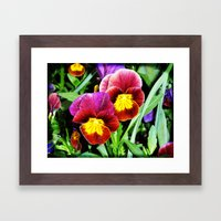 Pansy Party Framed Art Print