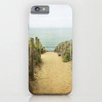 Path to the Beach iPhone 6 Slim Case