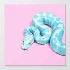 BLUE SNAKE Canvas Print