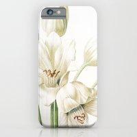 iPhone & iPod Case featuring VI. Vintage Flowers Botanical Print by Pierre-Joseph Redouté - Crinum Jagus by Anne Dante