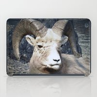 Tom Feiler Mountain Goat iPad Case