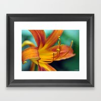 Glowing Orange Lily Framed Art Print