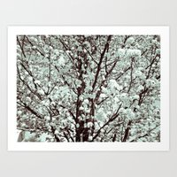 Winter Petals Art Print