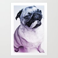 Color Pug Art Print
