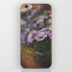 Sunny flowers iPhone & iPod Skin