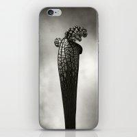 Pitcher iPhone & iPod Skin