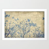 Vintage Duotone Indigo Blue and Cream Spring Dogwood Branches Art Print