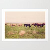 Badlands Horses, South Dakota Art Print