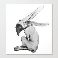 Deception Canvas Print