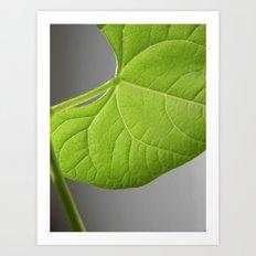 green bean leaf II Art Print