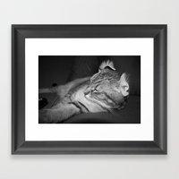 Shag V2.  Framed Art Print