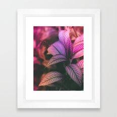 Violet Ladder Framed Art Print