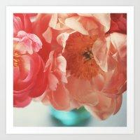 Paeonia #4 Art Print