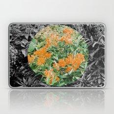 High Line Sunshine Laptop & iPad Skin
