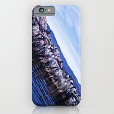 Seals and sea lions. iPhone 6s Slim Case