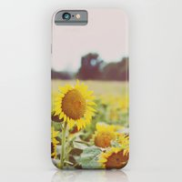 iPhone & iPod Case featuring Sunflower by Heather Lockwood