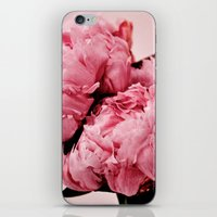In The Pink iPhone & iPod Skin