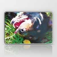 Dog Tanning Laptop & iPad Skin