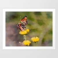 Butterfly Acrobats Art Print