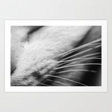 Listen up Meow Art Print