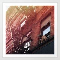 Man In Window - New York… Art Print