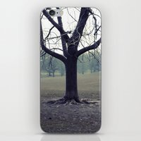 Parktree iPhone & iPod Skin