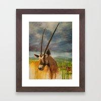 Gemsbok (Oryx Gazella) Framed Art Print