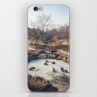 A Little Stream  iPhone & iPod Skin
