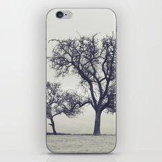 bleak trees... iPhone & iPod Skin