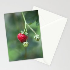 Red Ripe Strawberry Stationery Cards