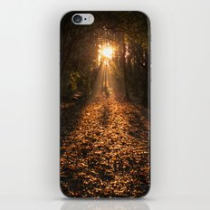 Autumn Fantasy : Let the Light Guide You iPhone & iPod Skin