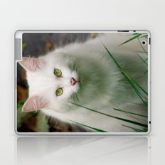 White Cat Laptop & iPad Skin