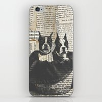 Basket-o-Bostons  iPhone & iPod Skin